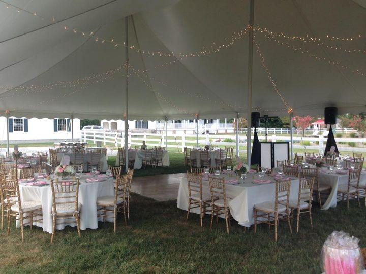 Reception tent lighting and setup