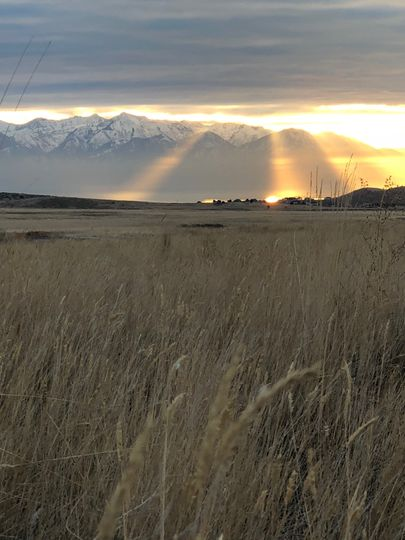 Fields of Wasatch Wing & Clay
