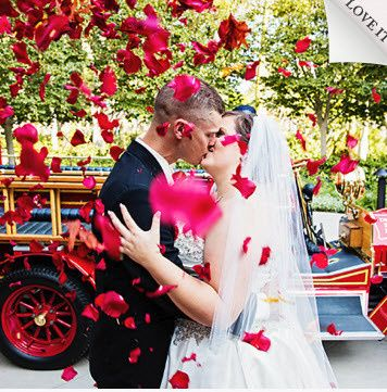 Tmx 1471972370881 Disney Wedding 5 Warwick, RI wedding travel