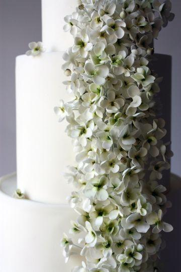 Miam Cake | Scarlett Kilzer