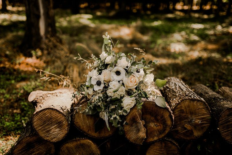 Lauren Dahlhauser Photography
