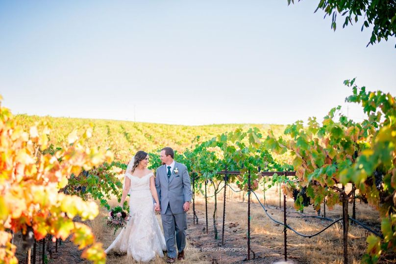 taylor kevin amador cellars winery s