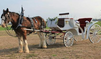 Columbus Limousine and Transportation