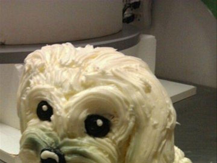 Tmx 1328887607155 Dogcake Philadelphia wedding cake