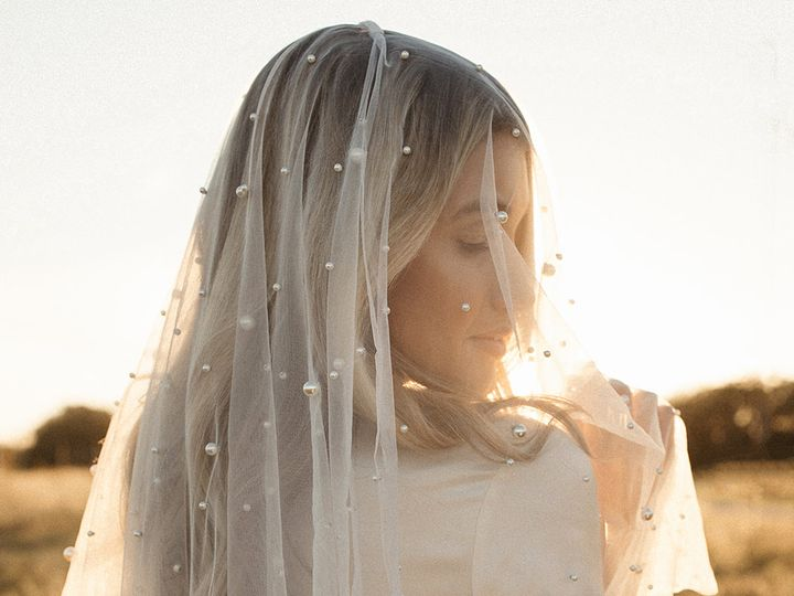 Tmx Emilia Veil Thelabel Aandbe Annabe Bridal 51 710861 160866928498720 Minneapolis, MN wedding dress
