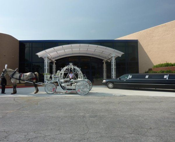 Cinderella Carriage and Limo.
