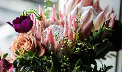 Natural Florals by Sarah Graham 3