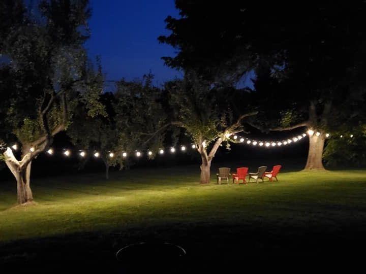 Tmx Nighttime Tree Lights 51 1942861 158471705727055 Hooksett, NH wedding venue