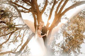 Dana Todd Photography
