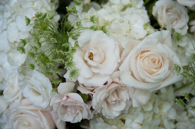 White blooms