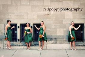 red poppy photography