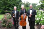 Allegro Chamber Players image