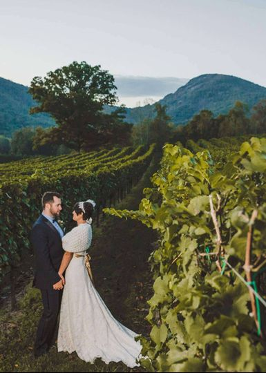 Love among the vines
