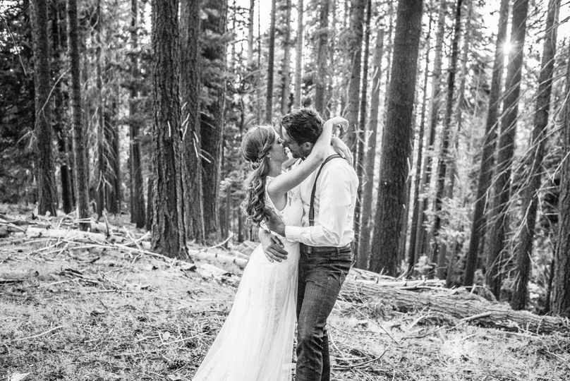 Sequoias forest elopement