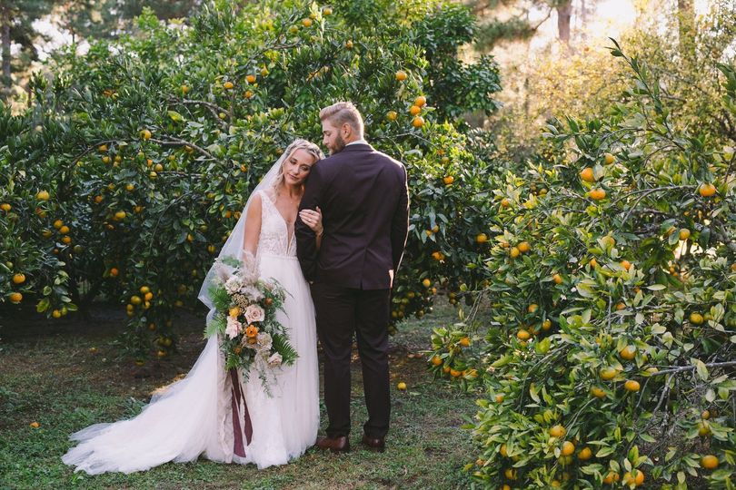 Newlyweds in the Citrus Grove