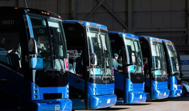lorenz bus service transportation the knot 51 1316961 162308601390059