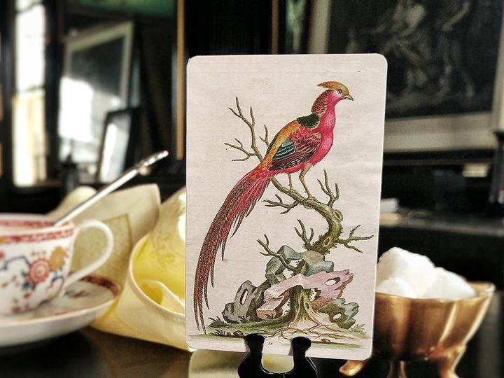 Tmx Mr Ps Place Cards Fanciful Pheasants 7 51 1861071 1566671444 Old Chatham, NY wedding invitation