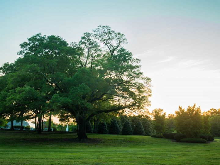 Tmx 1467049927027 Camellia Gardens Oak Monroe, NC wedding venue