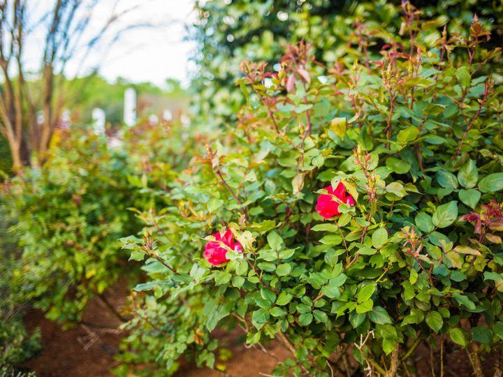 Tmx 1473445953179 Camellia Gardens 2016 24 Monroe, NC wedding venue