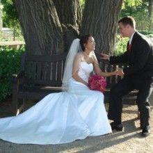 Tmx 1526863923 D3a95377157e4fd2 1526863922 63d64906714dda60 1526863922691 8 220x220 SQ 1377711 Milwaukee, WI wedding florist