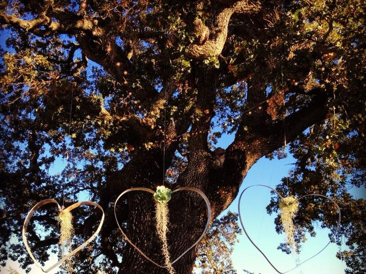 Tmx 1382444488659 Kerry Matt Tree Hearts San Luis Obispo, CA wedding officiant