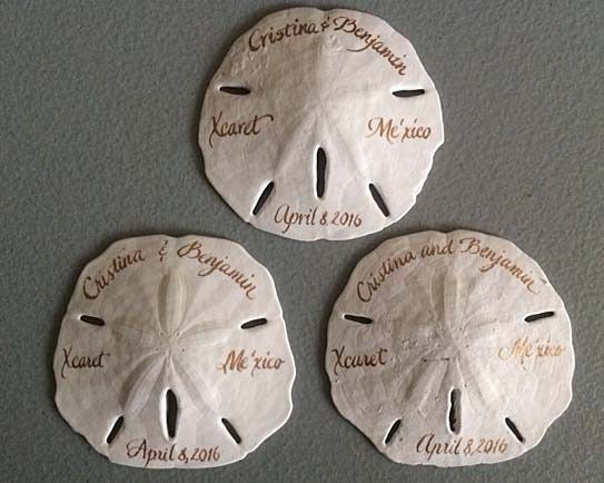 Tmx 1473701434726 Sand Dollar Samples Belmar, NJ wedding invitation