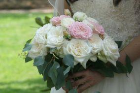 Floral Designs by Heather Hendrickson