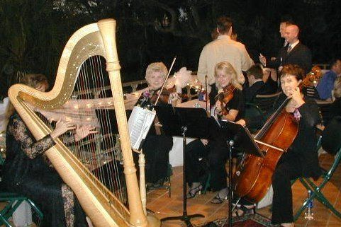 Tmx 1225985044129 TrioBetsySelby Nokomis wedding ceremonymusic