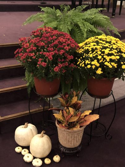 Fall Stage Decor