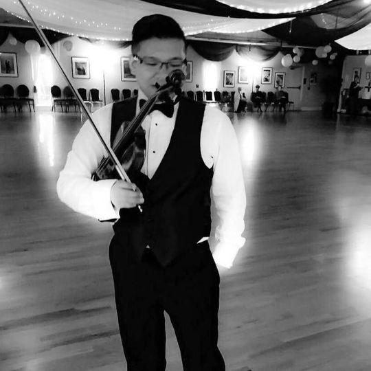 lan violin black and white