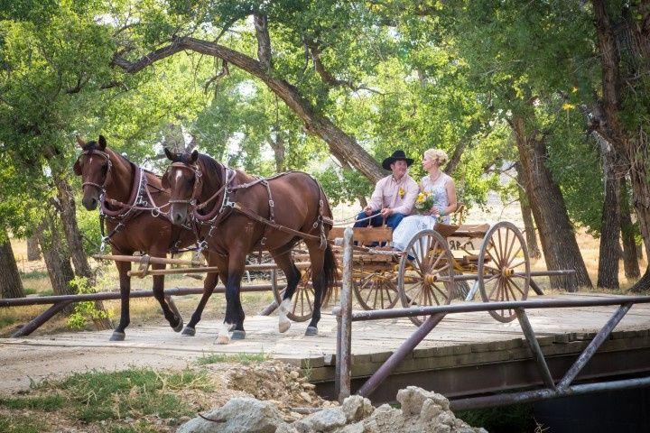 Ranch wedding