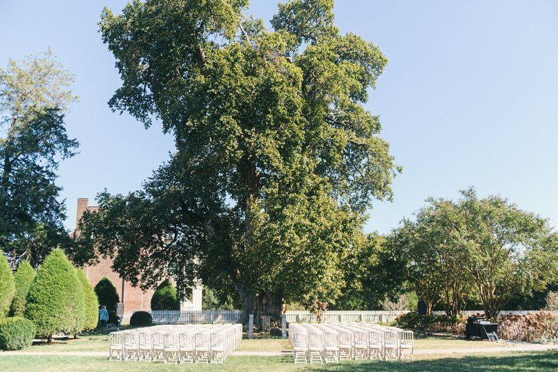 Osage Orange Tree w/ Ceremony