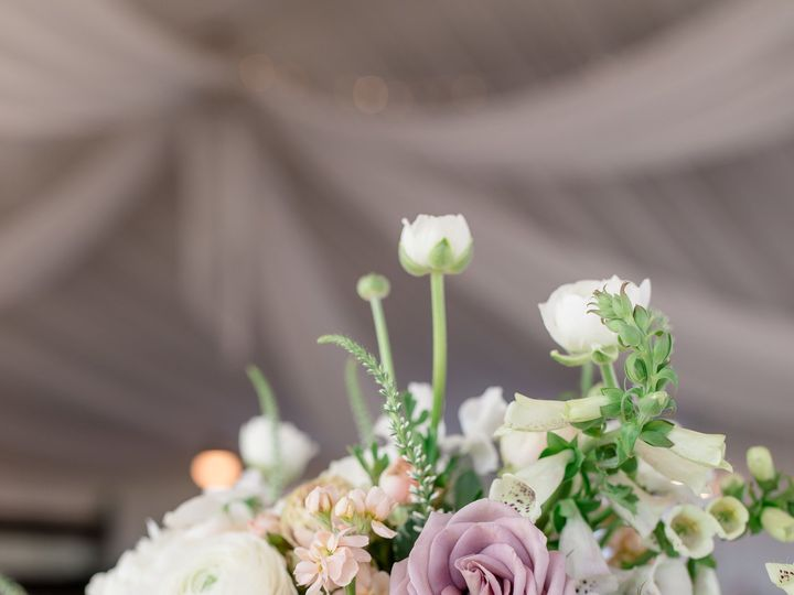 Tmx 1510811036858 Abigail  Vaughn 03 Aspen, Colorado wedding florist