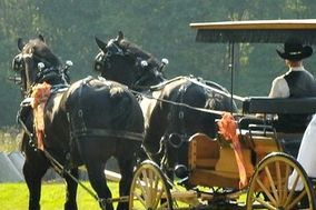Ma & Pa's Horse Drawn Sleigh & Carriage Rides Weddings
