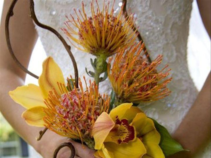 Tmx 1238539462331 IMG56561 Perry Hall, MD wedding florist