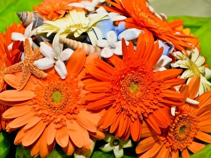 Tmx 1436550841707 Flowers Perry Hall, MD wedding florist
