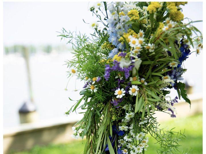 Tmx Img 3132 51 134371 Perry Hall, MD wedding florist