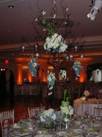 weddings 26Events084