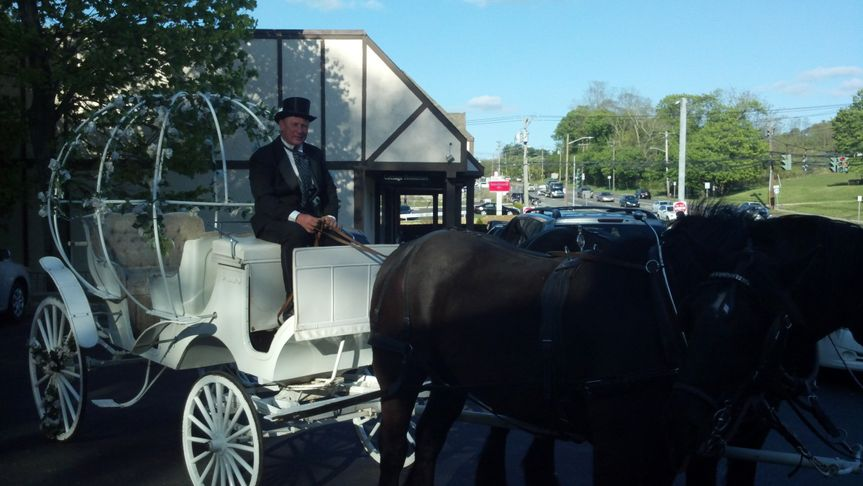 Pull up in style in your own horse and carriage!