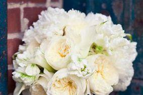 San Diego Wholesale Florist