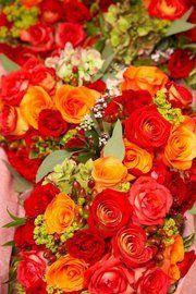 Tmx 1326335536459 1 Narragansett, Rhode Island wedding florist