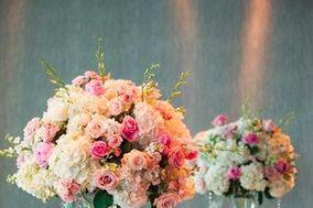 Margaritas flowers
