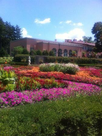 garden colorful