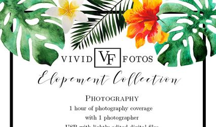 VIVIDfotos 1