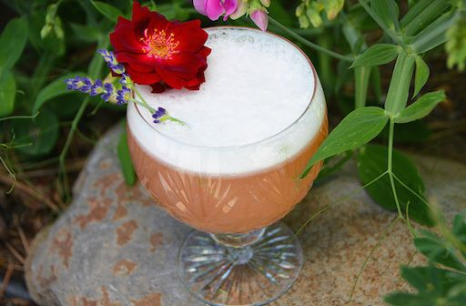 Hibiscus whiskey sour with organic lemon, hibiscus syrup, bourbon, and locally foraged lavender.