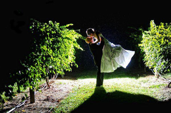 Nighttime Vineyard Shot