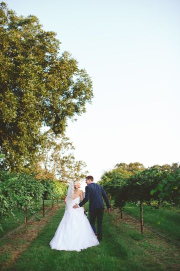 Walking through the Grapevines