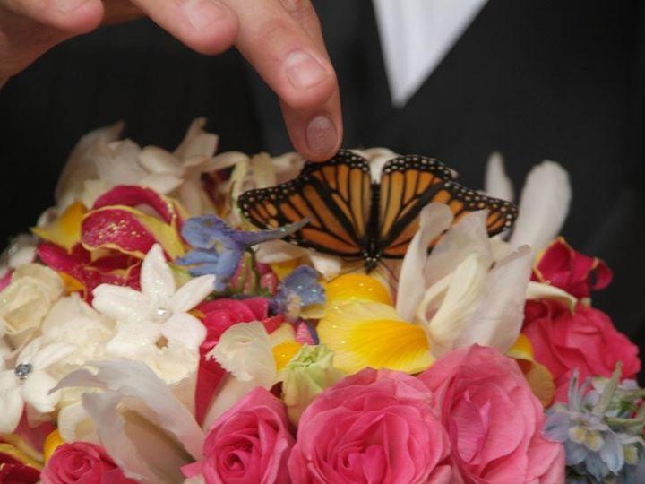 Tmx 1359730713928 DSCF0283 Williston Park, NY wedding photography