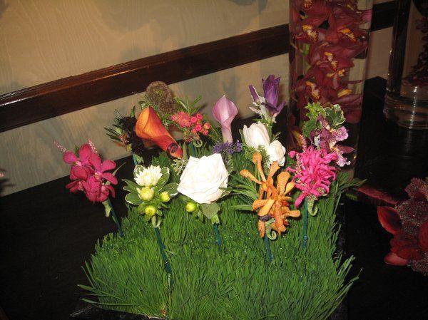 Tmx 1316546369653 IMG3136 Dallas, Texas wedding florist