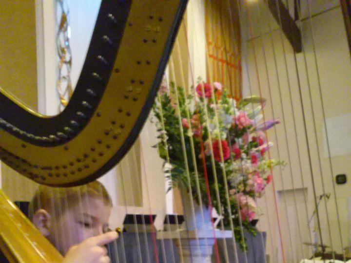 Tmx 1444595690871 Harp Maestro 1 25 2014 Austin, TX wedding ceremonymusic